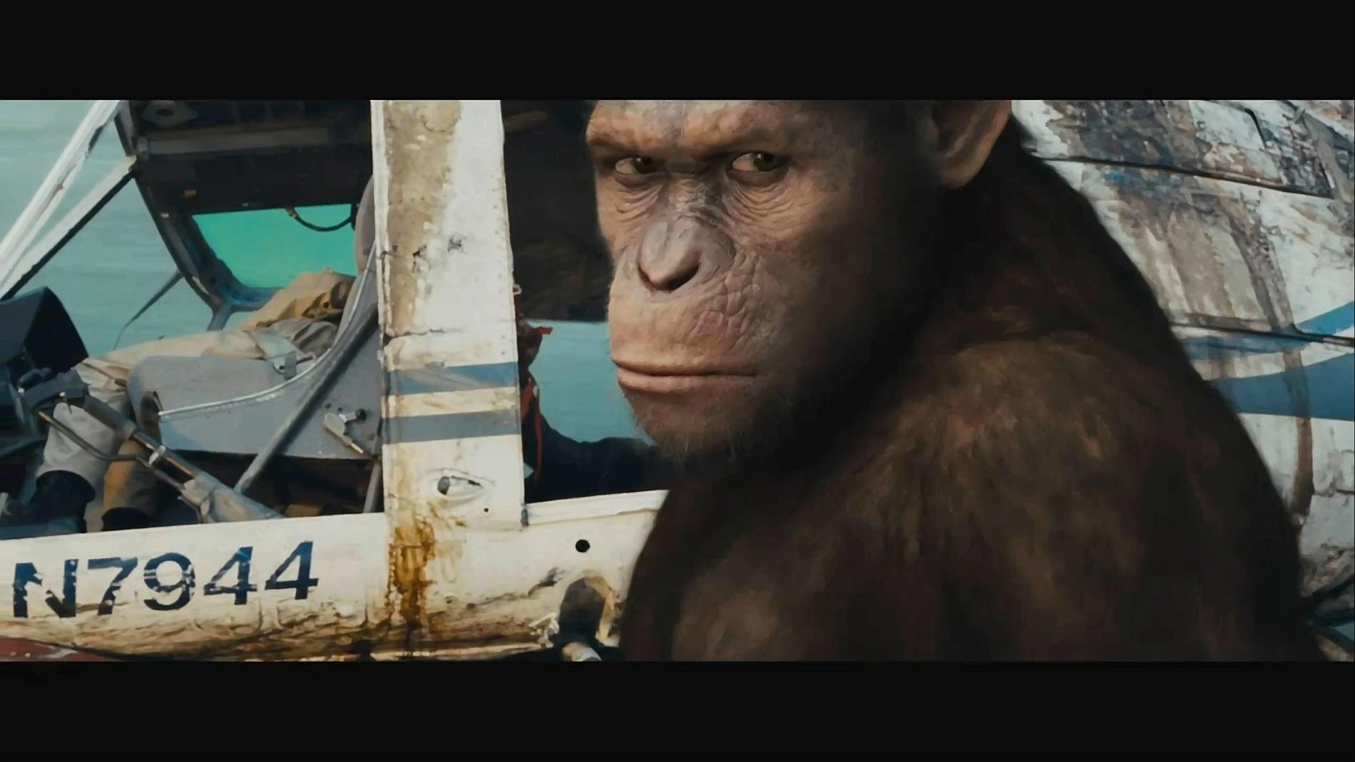 Exclusive_Rise_of_the_Planet_of_the_Apes_-_Comic-Con-2500_20110722091604