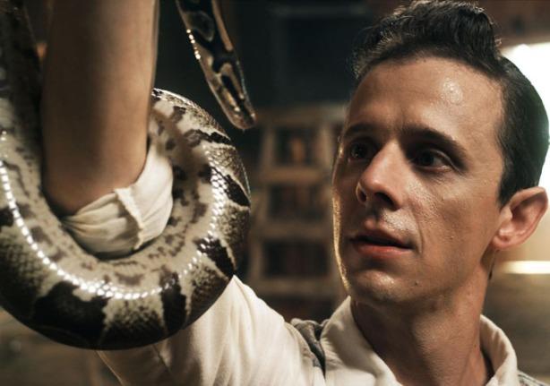 snake-default
