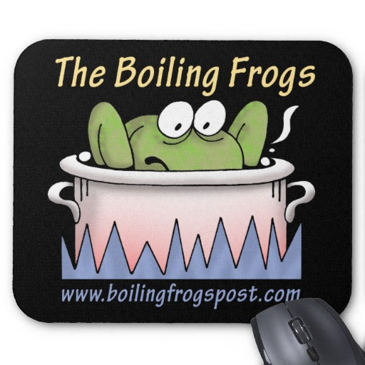 boiling_frogs_post_mouse_pad-r487697abf75247cc9c03c3432cf544a4_x74vi_8byvr_512