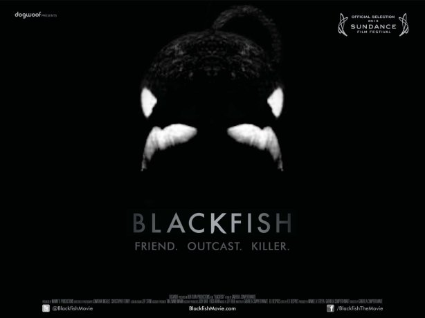 Dogwoof_Documentary_Blackfish_Quad_New_1600_1200_85