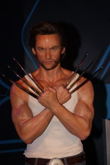 Wolverine_(7343567212)