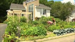 2012-07-18-drummondville-garden-266x150