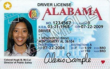alabama_drivers_license_239423