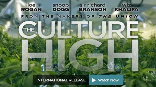 culture_high_int_release