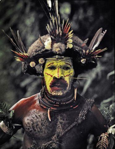 tribe10sdfsdfsdfsdf