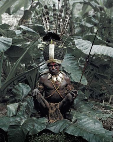 tribe12dfsdfsdfsdfsdf