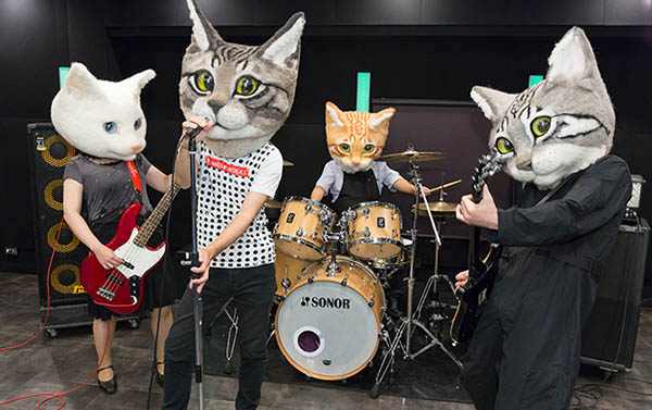 catheadbandnumberoneasldkjalsjkd