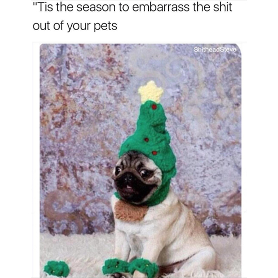 i-hate-christmas