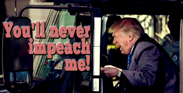 never-impeach copy.png
