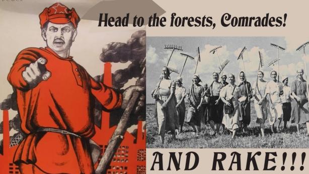 Rake-Comrades copy