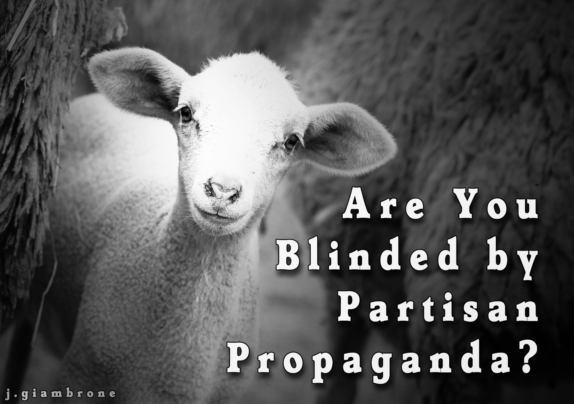 blinded-partisan-propaganda copy